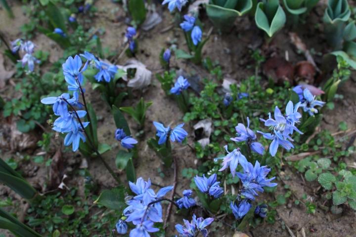 marchwk2blogpics 023
