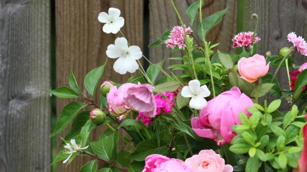 pink_arrangement 072