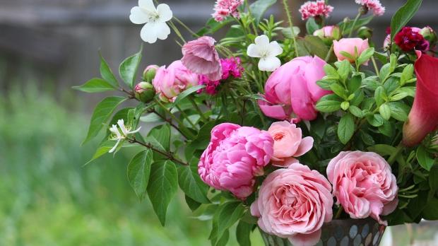 pink_arrangement 089