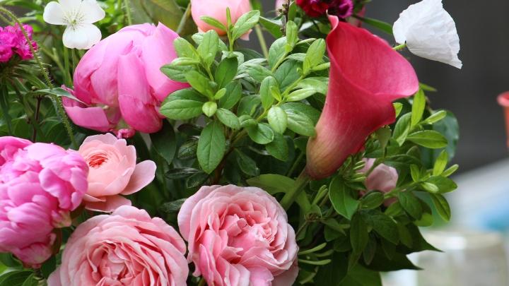 pink_arrangement 091