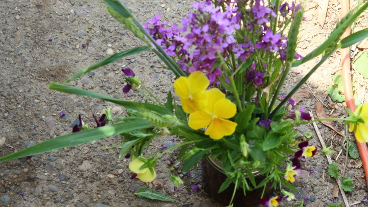 Wednesday Flower Arrangement #1 – Pansies and Wheat Jar Posies